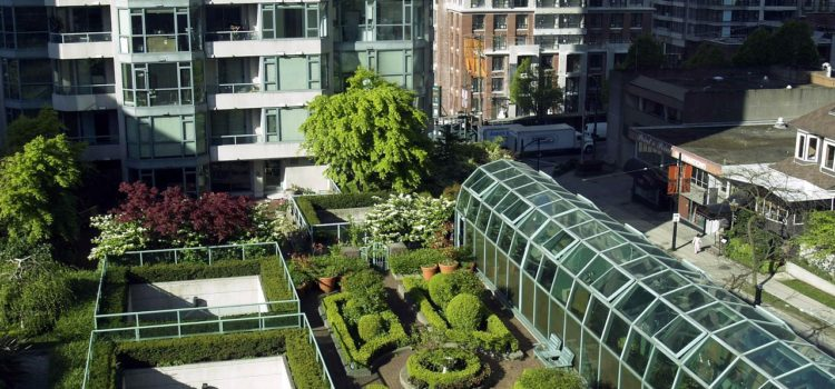 Terrazas Verdes Sólo Buenas Intenciones I Ciudad